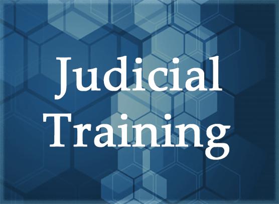 Judicial Training